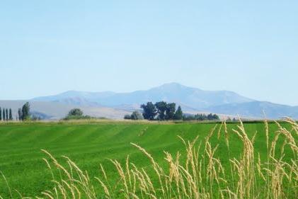 Firth Idaho Real Estate